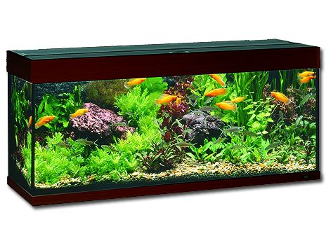 Juwel Rio 240 akvárium set tmavě hnědý 121x41x55 cm, objem 240 l