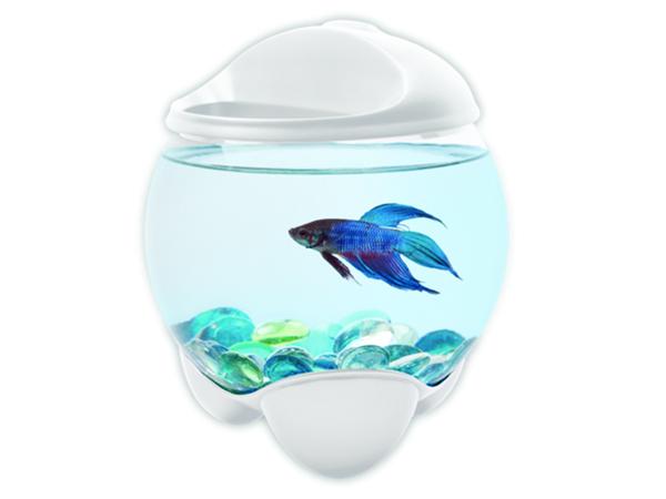 Akvárium TETRA Betta Bubble bílé 1,8 l