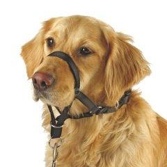 Halti Nylonová ohlávka pro psy - 3, krk 40-50 cm