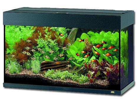 Juwel Rio 125 akvárium set černý 81x36x50 cm, objem 125 l