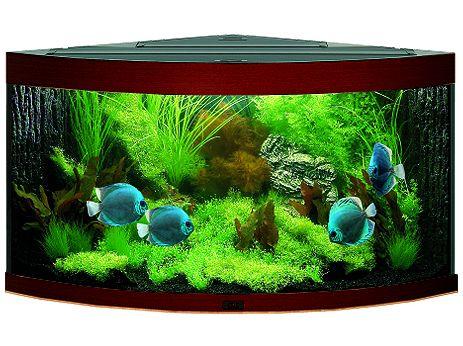 Juwel Trigon 350 akvárium set rohový tmavě hnědý 123x87x65 cm, objem 350 l