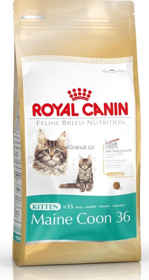 Royal Canin Breed Feline Kitten Maine Coon - pro koťata mainské kočky 400 g