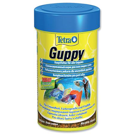 Tetra Guppy food základní krmivo pro ryby100 ml