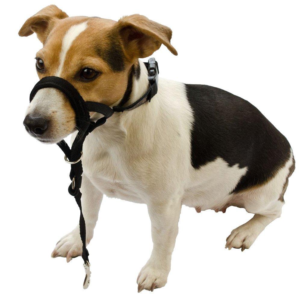 Halti Nylonová ohlávka pro psy - 0, krk 20-30 cm