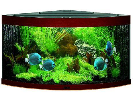 Juwel Trigon 190 akvárium set rohový tmavě hnědý 98x60x50 cm, objem 190 l
