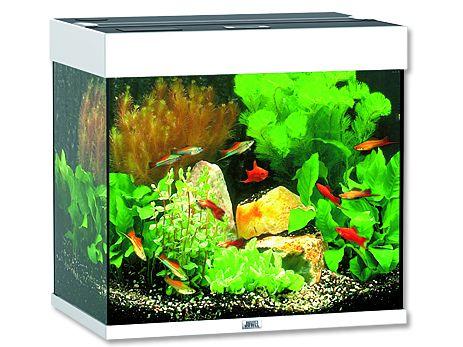 Juwel Lido 120 akvárium set bílý 61x41x58 cm, objem 120 l