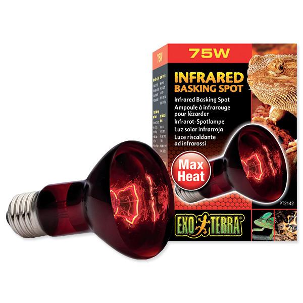 Žárovka EXO TERRA Infrared Basking Spot 75 W