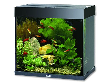 Juwel Lido 120 akvárium set černý 61x41x58 cm, objem 120 l
