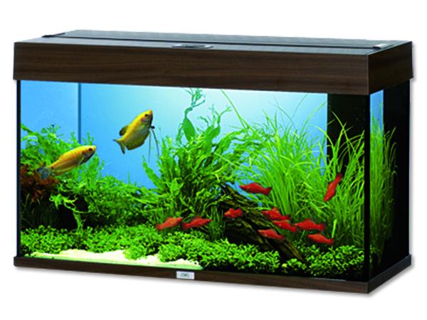 Juwel Rio 125 akvárium set tmavě hnědý 81x36x50 cm, objem 125 l
